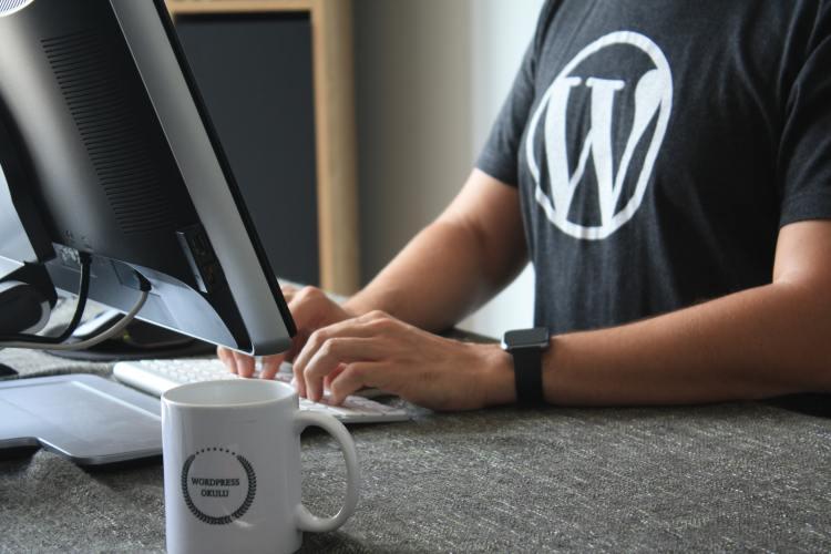 Wordpress for Beginners: Help building a blog